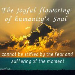 The joyful flowering