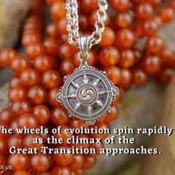 The wheels of evolution spin rapidly