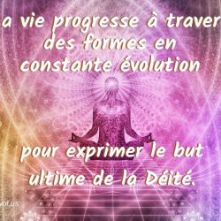 La vie progresse a travers