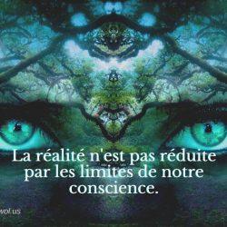 La realite n est pas reduite