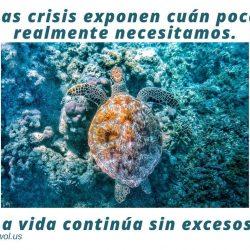 Las crisis exponen cuan poco