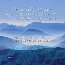 Notre ADN spirituel
