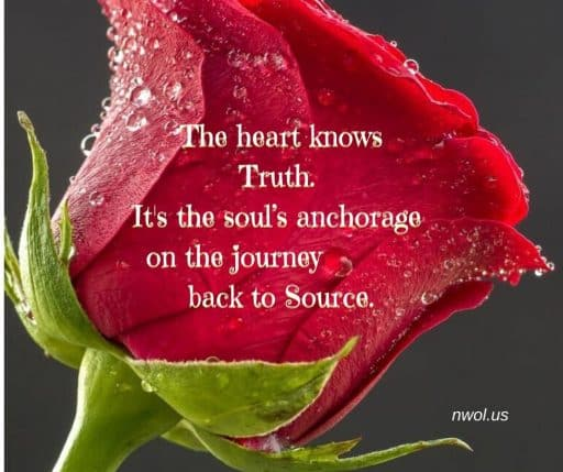 The heart knows Truth. It's the soul's anchorage on the journey back to Source.