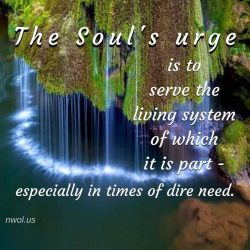 The urge of the soul is to serve