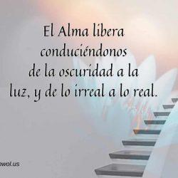 El Alma libera