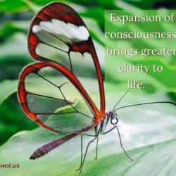 Expansion of consciousness brings greater clarity