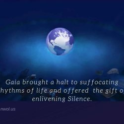 Gaia brought a halt to suffocating rhythms of life