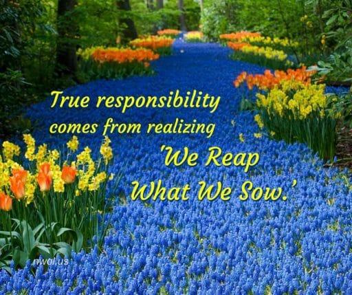 True responsibility comes from realizing 'We Reap What We Sow'.