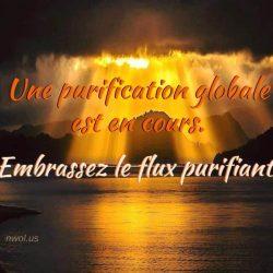 Une purification globale