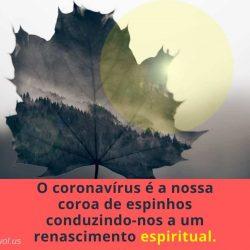 O coronavirus e a nossa