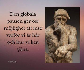 Den globala