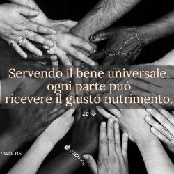 Servendo il bene universale