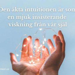Den akta intuitionen ar som