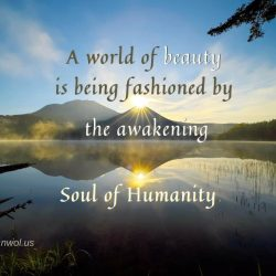 A world of beauty is being fashioned