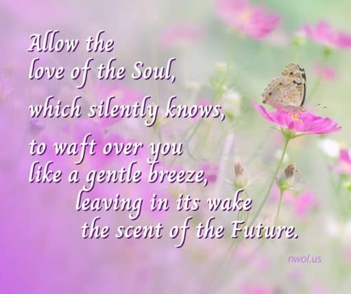 Allow the love of the Soul, which silently knows, to waft over you like a gentle breeze, leaving in its wake the scent of the Future.