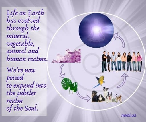 Life on Earth has evolved through the mineral, vegetable, animal and human realms. We're now poised to expand into the subtler realm of the Soul.