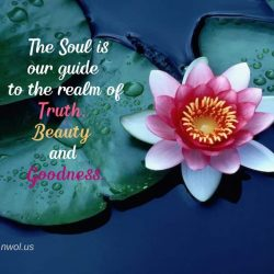The Soul is our guide to the realm of Truth