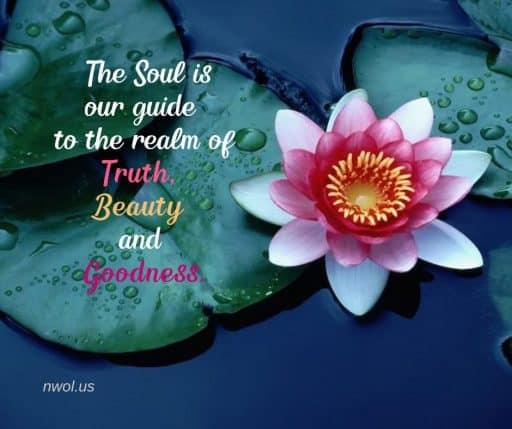 The Soul is our guide to the realm of Truth, Beauty and Goodness.