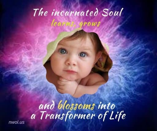 The incarnated Soul learns, grows and blossoms into a Transformer of Life.