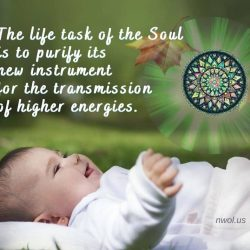 The life task of the Soul is to purify its new instrument