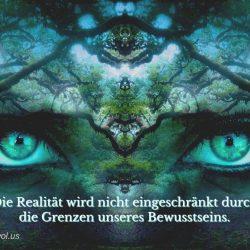 Die Realitat wird nicht eingeschrankt durch