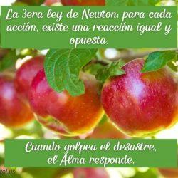 La 3era ley de Newton para cada