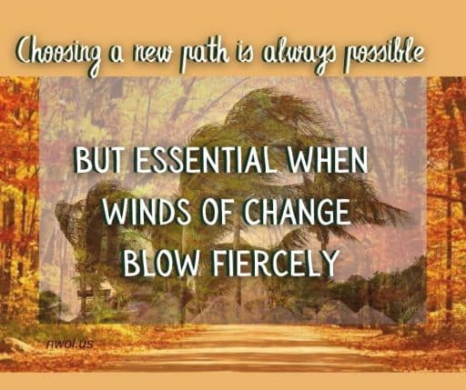 Choosing a new path is always possible, but essential when winds of change blow fiercely.