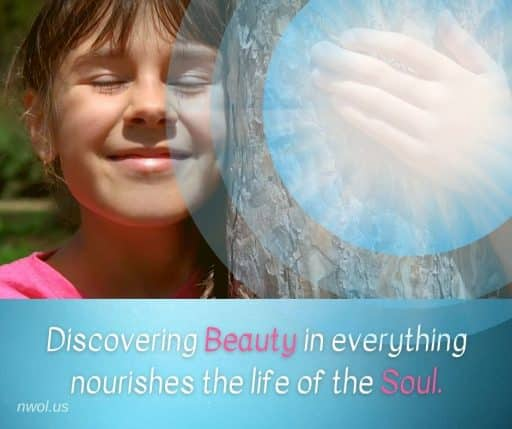 Discovering Beauty in everything nourishes the life of the Soul.