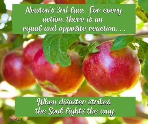 Newton's 3rd law: For every action, there is an equal and opposite reaction . . . When disaster strikes, the Soul responds.