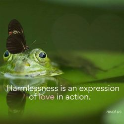 Harmlessness is an expression of love in action