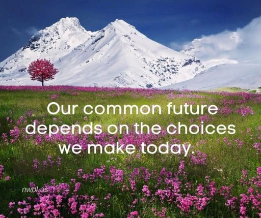 Our common future depends on the choices we make today.