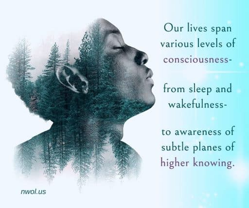 Our lives span various levels of consciousness—from sleep and wakefulness—to awareness of subtle planes of higher knowing.