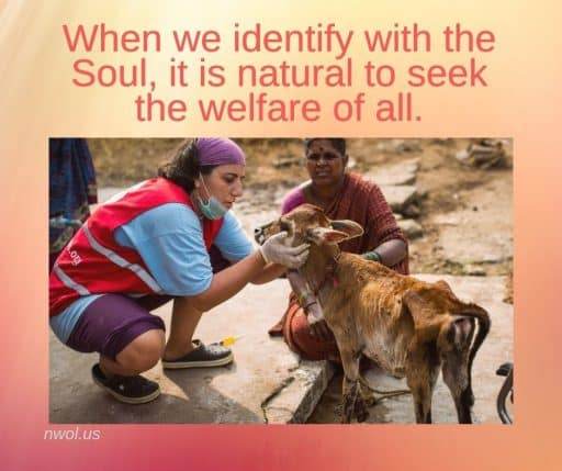 When we identify with the Soul, it is natural to seek the welfare of all.