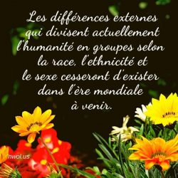Les differences externes