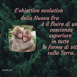 Lobiettivo evolutivo
