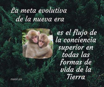 La meta evolutiva