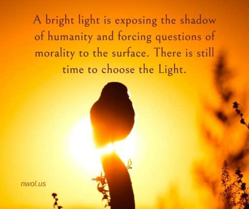 A bright light is exposing the shadow of humanity and forcing questions of morality to the surface. There is still time to choose the Light.