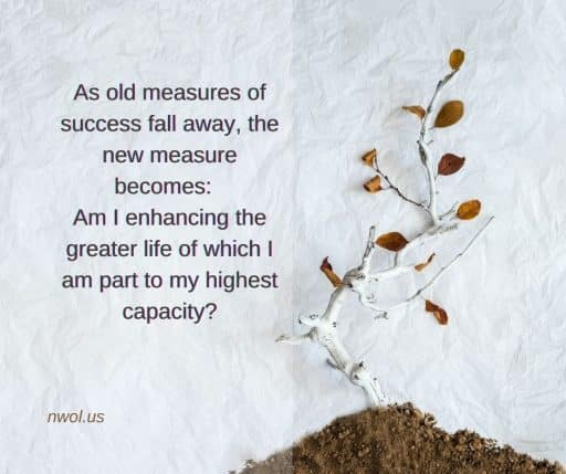 As old measures of success fall away, the new measure becomes: Am I enhancing the greater life of which I am part to my highest capacity?