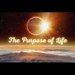 The Purpose of Life
