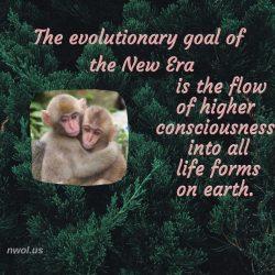 The evolutionary goal of the new era