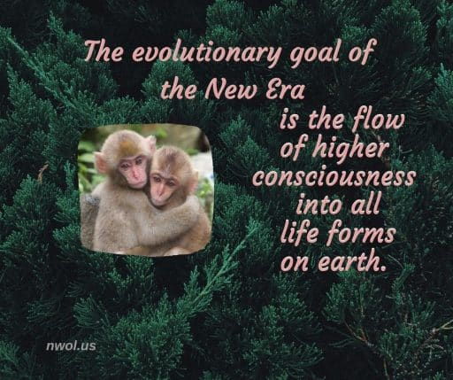 The evolutionary goal of the new era is the flow of higher consciousness into all life forms on Earth.