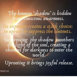 The human shadow is hidden from conscious awareness