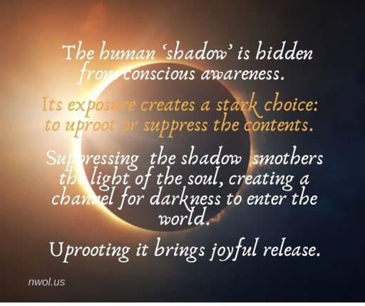 The human 'shadow' is hidden from conscious awareness. Its exposure creates a stark choice: to uproot or suppress the contents. Suppressing the shadow smothers the light of the soul, creating a channel for darkness to enter the world. Uprooting it brings joyful release.