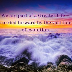 We are part of a Greater Life