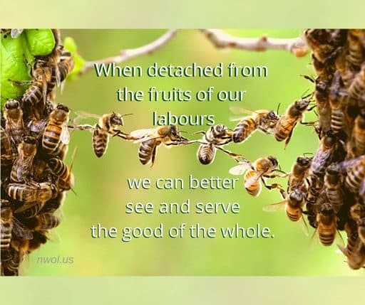 When detached from the fruits of our labours we can better see and serve the good of the whole.