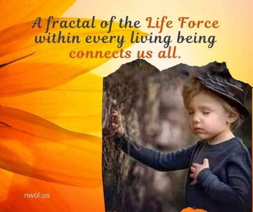 A fractal of the Life Force within every living being connects us all.