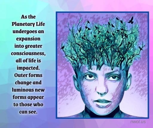 As the Planetary Life undergoes an expansion into greater consciousness, all of life is impacted. Outer forms change and luminous new forms appear to those who have eyes to see.