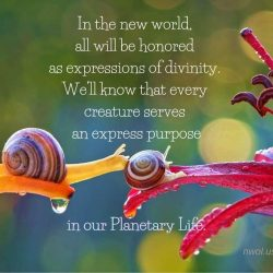 In the new world all will be honored as expressions of divinity