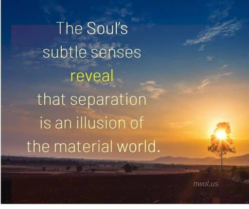 The Soul's subtle senses reveal that separation is an illusion of the material world.