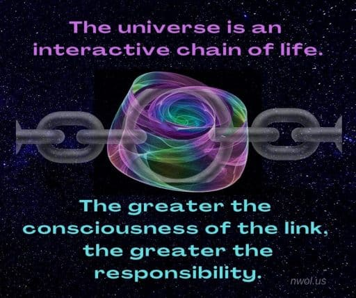The universe is an interactive chain of life. The greater the consciousness of each link, the greater the responsibility.